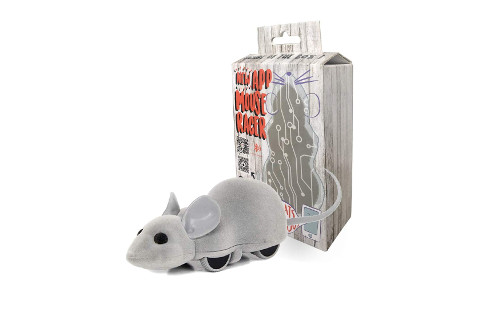 Ito Rocky Interactive Cat Chase Toy